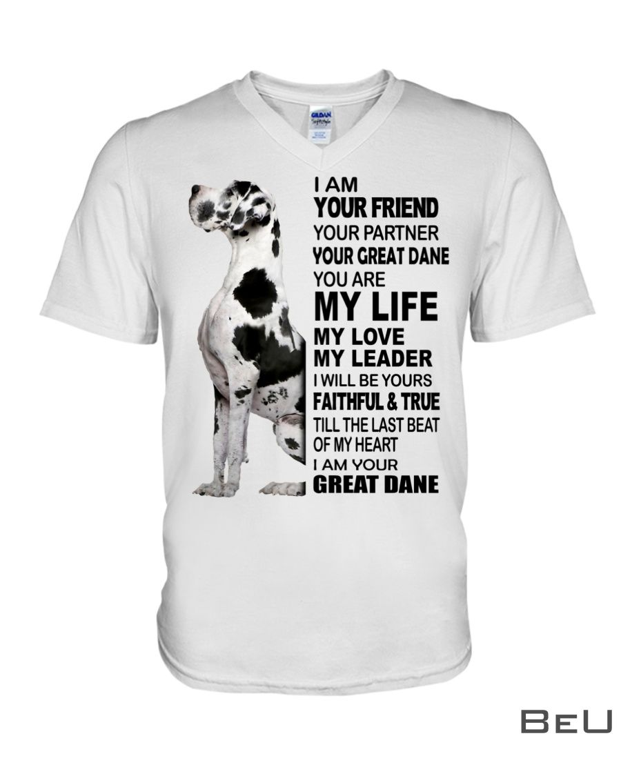 I am your friend your partner your Great Dane shirt3