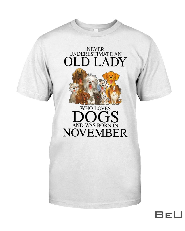 Never Underestimate A November Old Lady Who Loves Dogs Shirtz