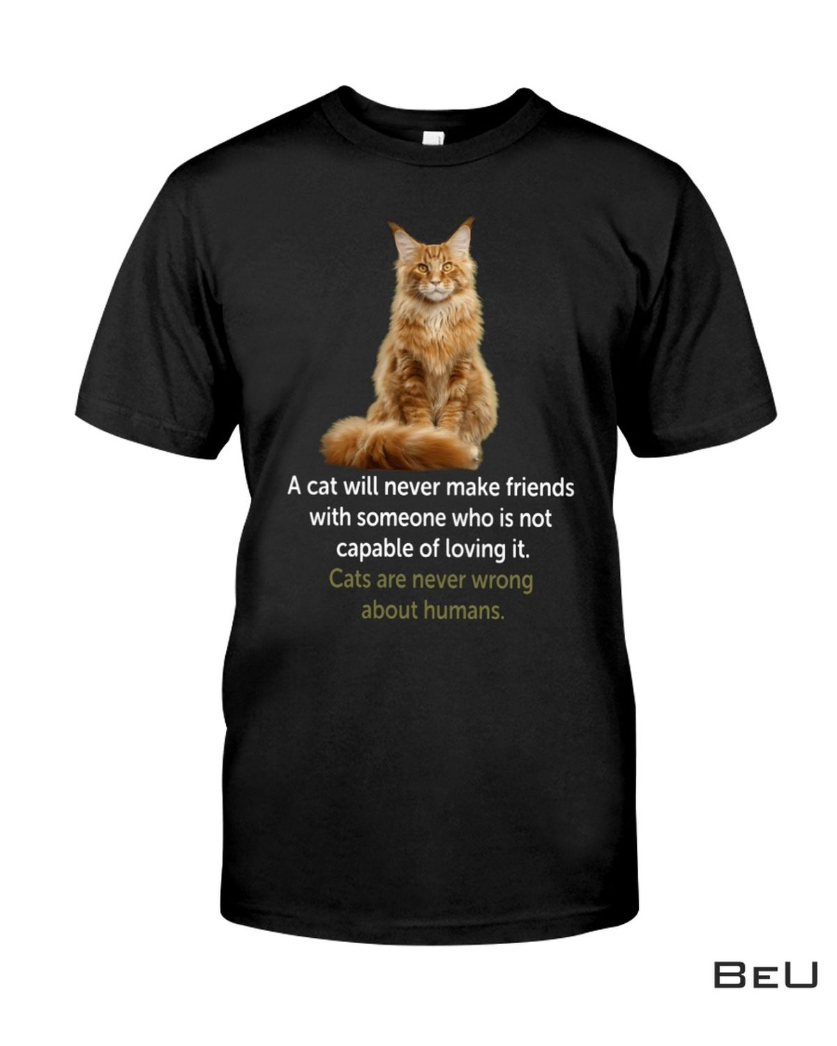 A Cat Will Never Make Friends With Someone Who Is Not Capable Of Loving It Shirt, hoodie, tank top