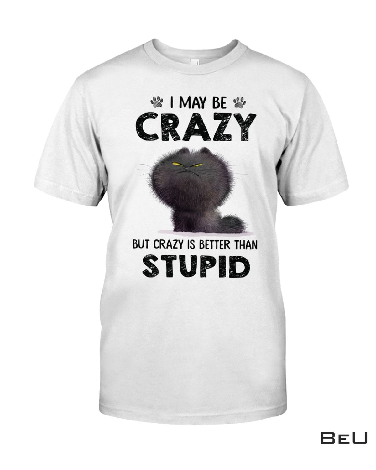 I May Be Crazy But Crazy Is Better Than Stupid Funny Cat Shirt, hoodie, tank top